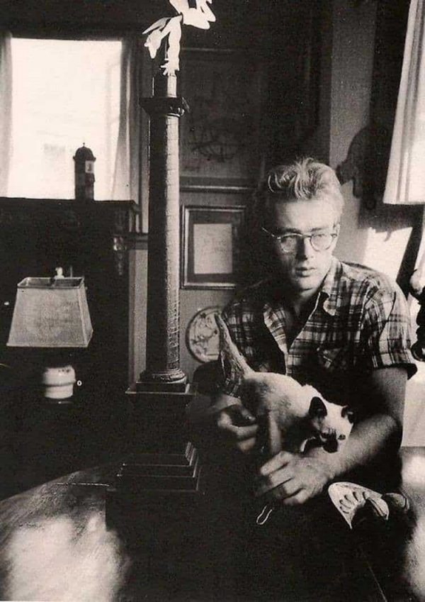 James Dean and his cat Marcus, 1954