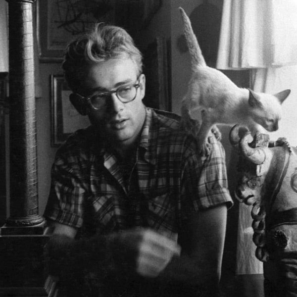 James Dean with his cat Marcus in 1954